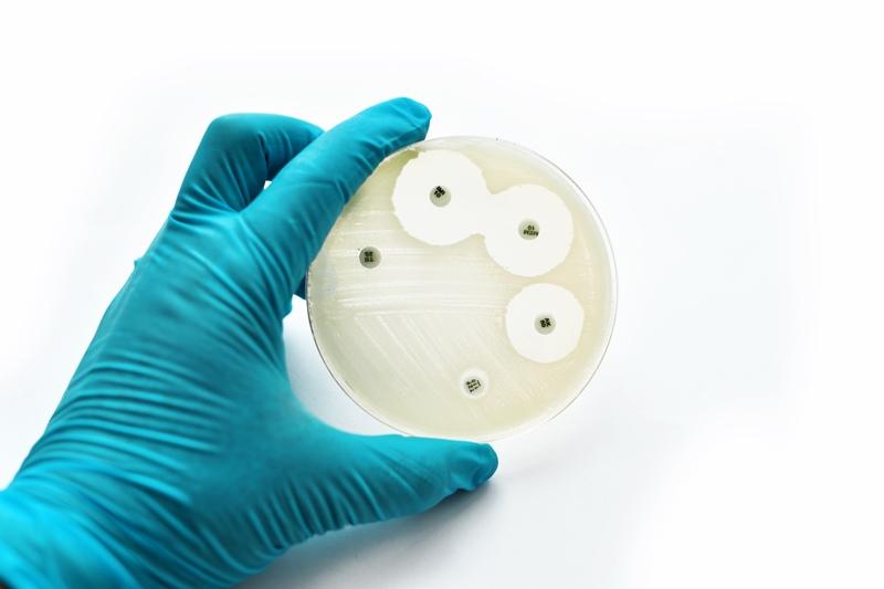 Antibiotikaresistente bakterier